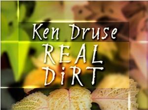 real dirt