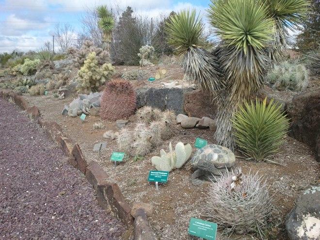 Plantasia Cactus Gardens -Twin Falls, Idaho