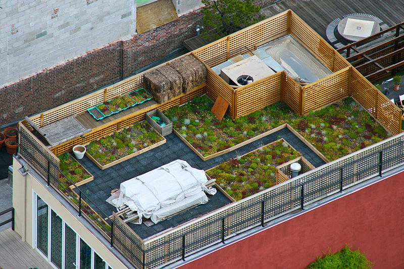 Rooftop Garden   Manhattan, New York ( Photo Credit: Wikimedia Commons)