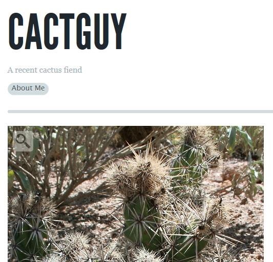cactguy