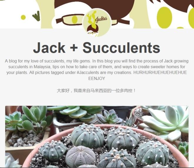 jacculents