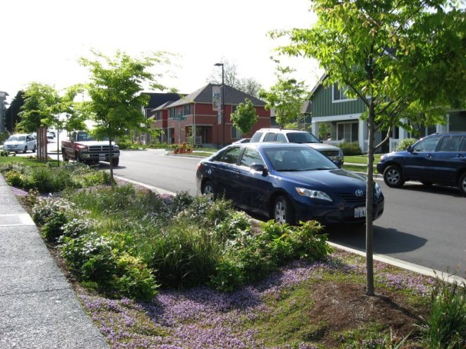 A rain garden or bioswale planted in a hellstrip to help mitigate storm water runoff. (photo credit: epa.gov)