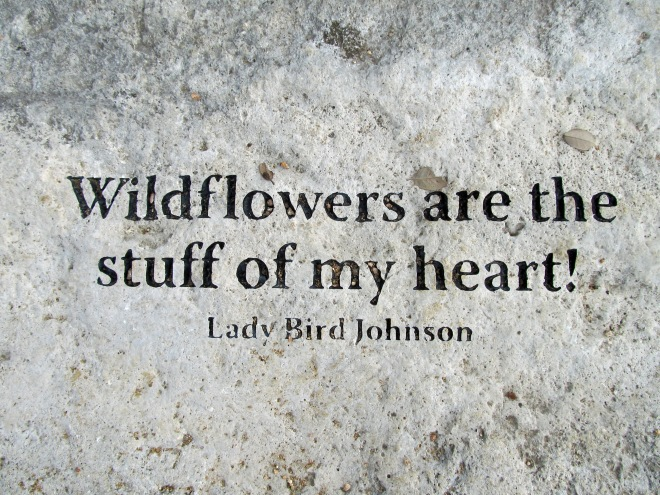 lady bird johnson quote