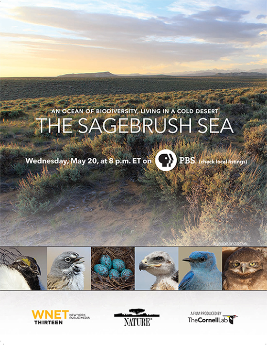 The-Sagebrush-Sea
