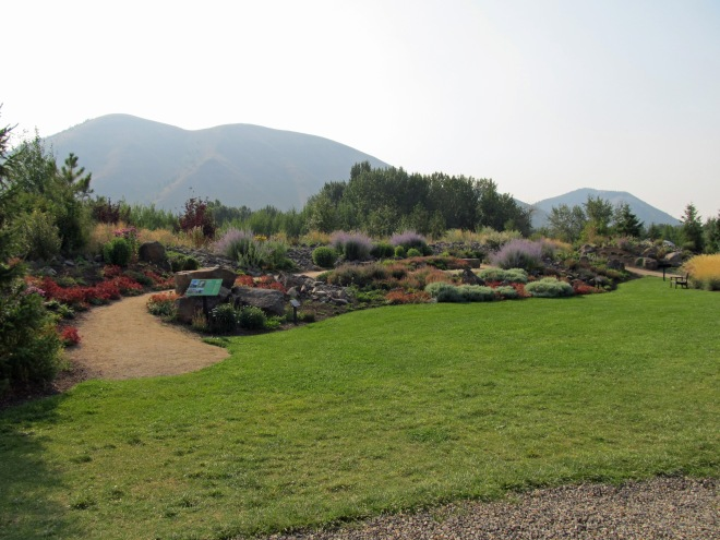 Berms in the Alpine Garden with pathway passing through