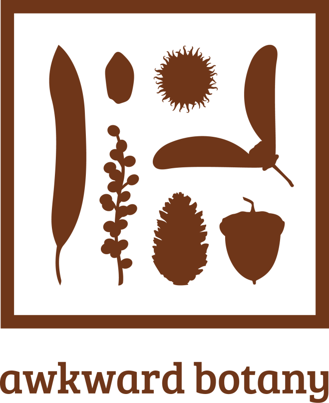 AB_Logo_Brown1