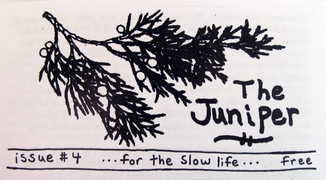 the juniper zine