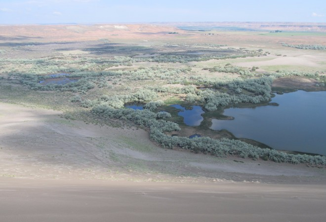 On top of the sand dune looking down at the lake and marsh.