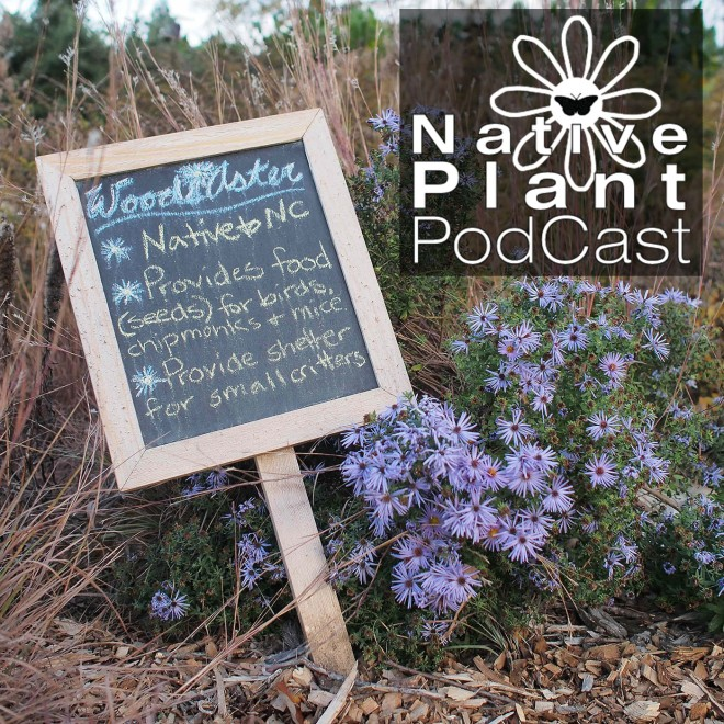 native plant podcast logo and sign