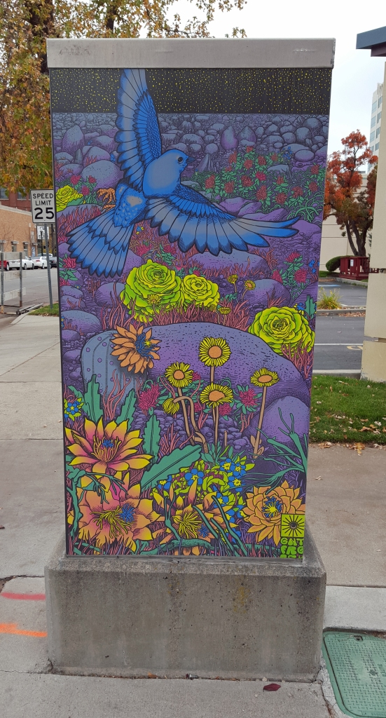Utility box in Boise, Idaho