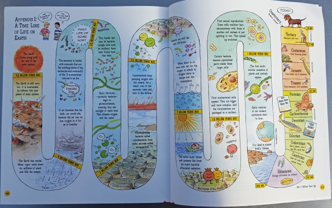 A time line of life on earth from When Fish Got Feet by Hannah Bonner