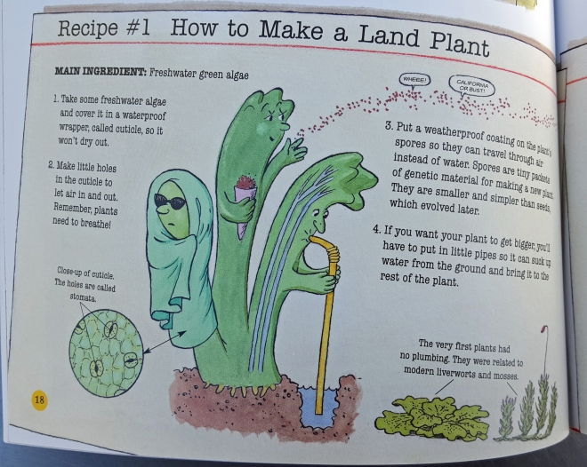 Recipe for a land plant from When Fish Got Feet by Hannah Bonner